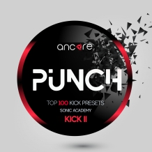 PUNCH Presets For Kick2