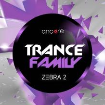 Zebra2 Trance Family Soundset